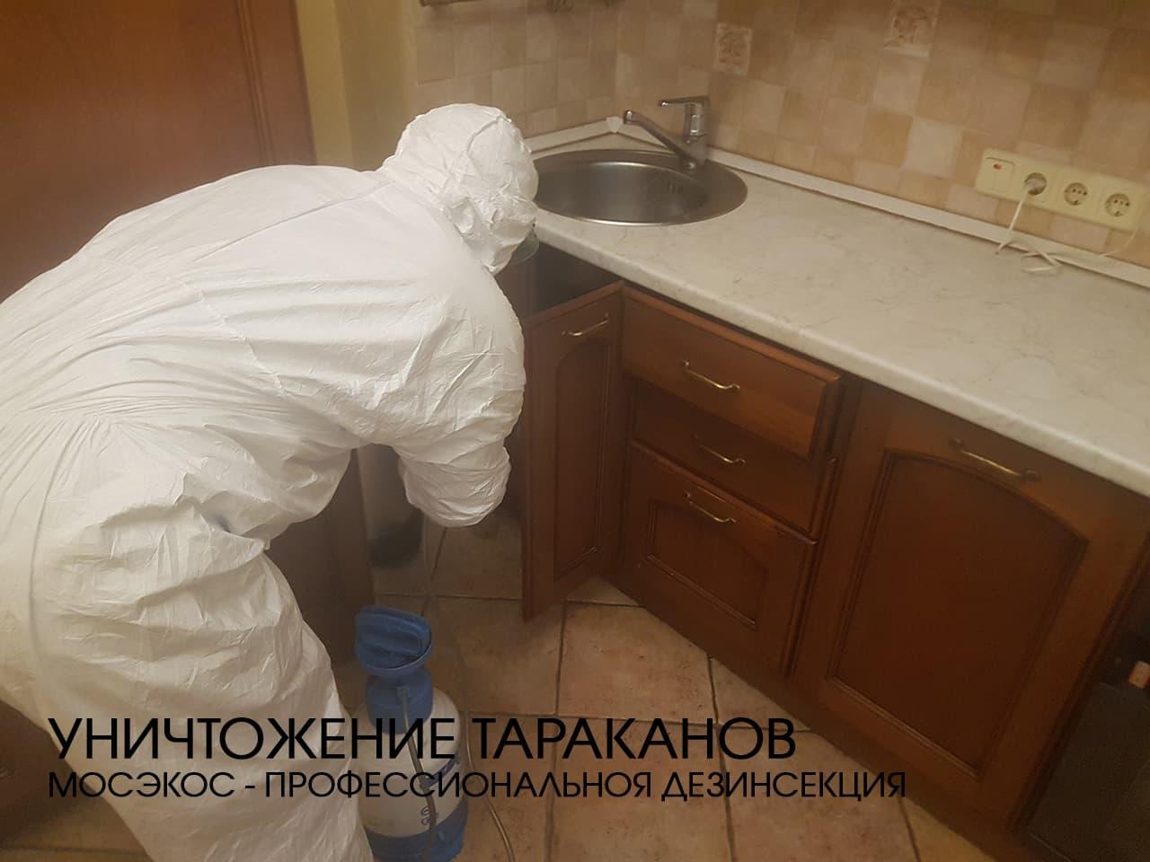 Дезинсекция тараканов профессиональная помощь организациям и предприятиям